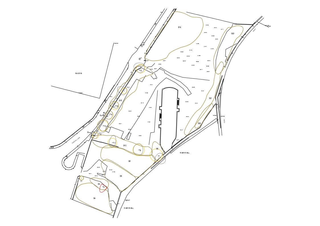 Tree Constraints Plan